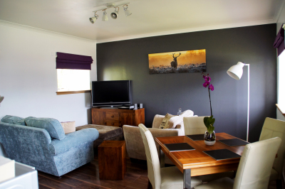 Apartments open plan living area showing flat screen tv
