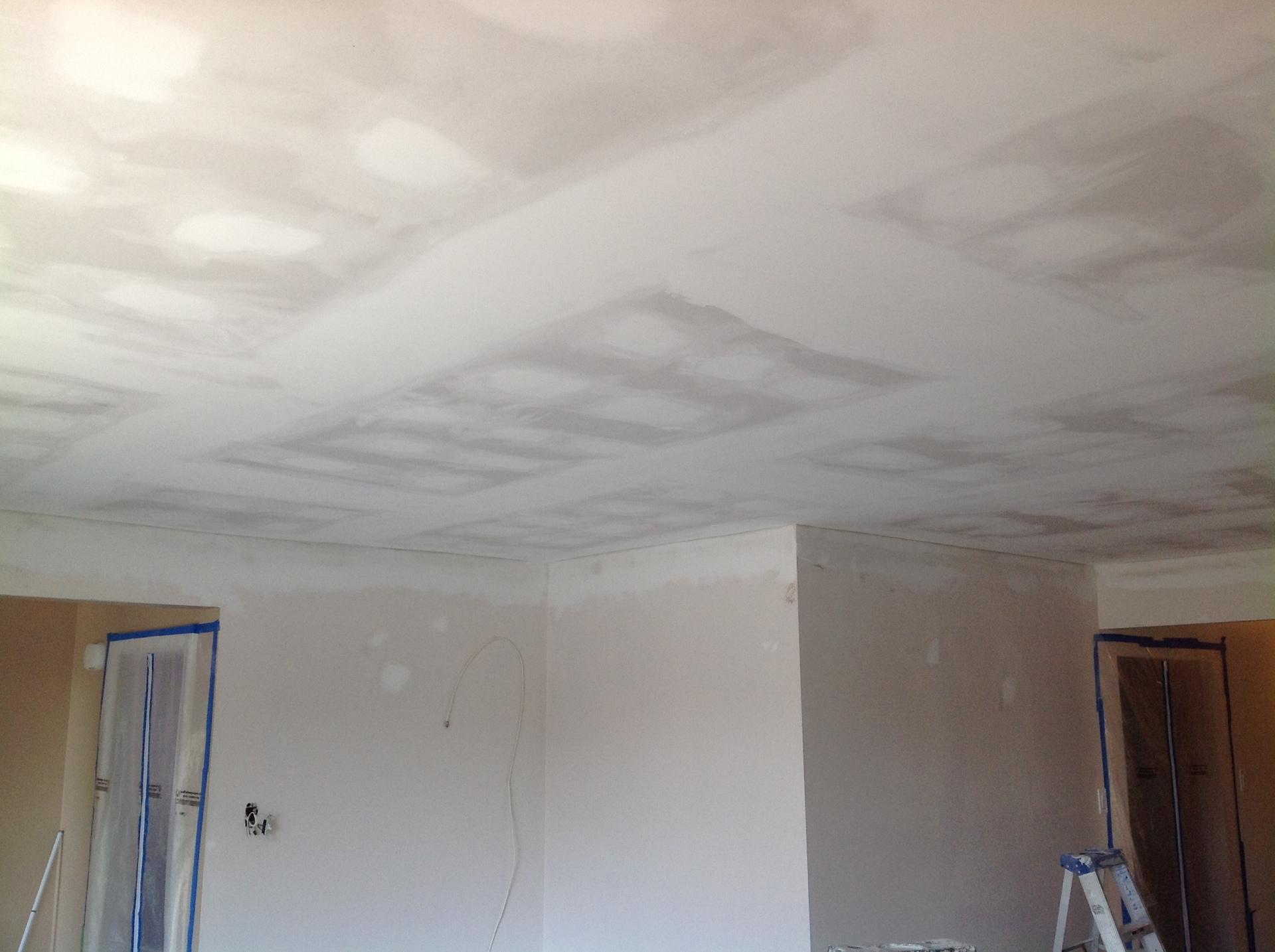 Ceiling Plastered ready for primer