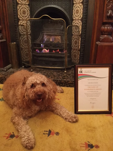DofE AAP certificate