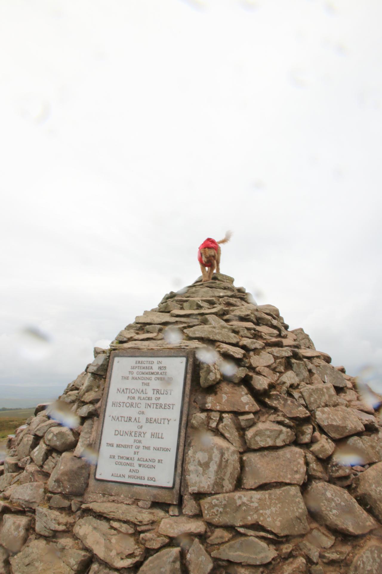Exmoor Recce and the Quantock Hills - 3 Marilyns