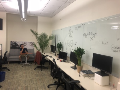 Dry lab upgrade: whiteboards, ferns, and couches!