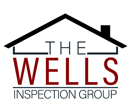 The Wells Inspection Group