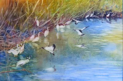 Wild Aviary (2012)