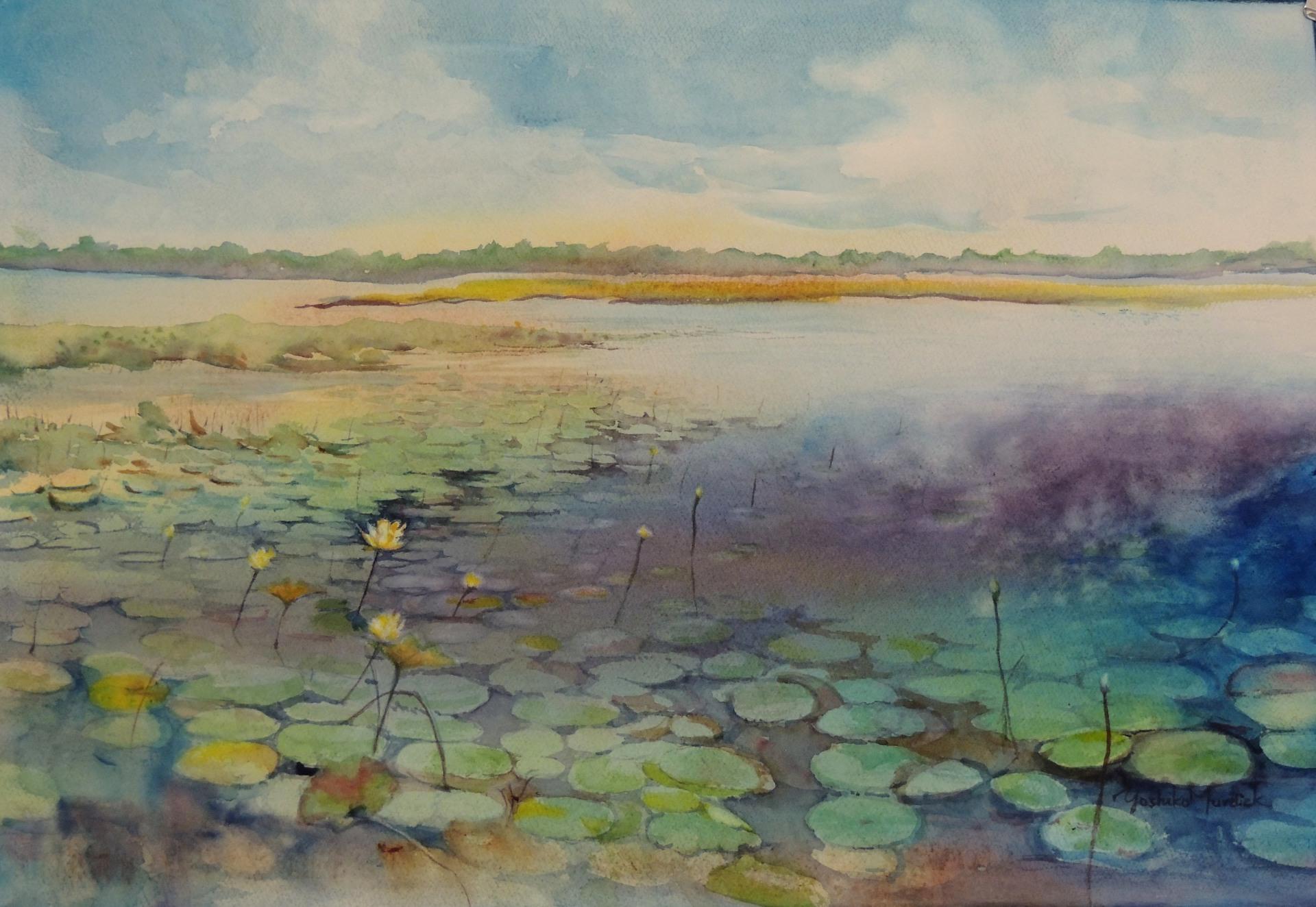 Lake Iamonia in July (2014)
