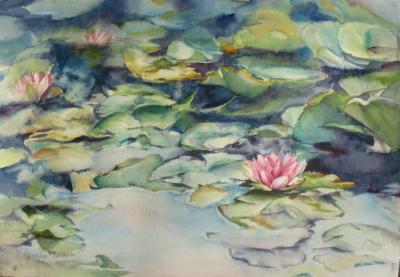 Waterlilies (2010)