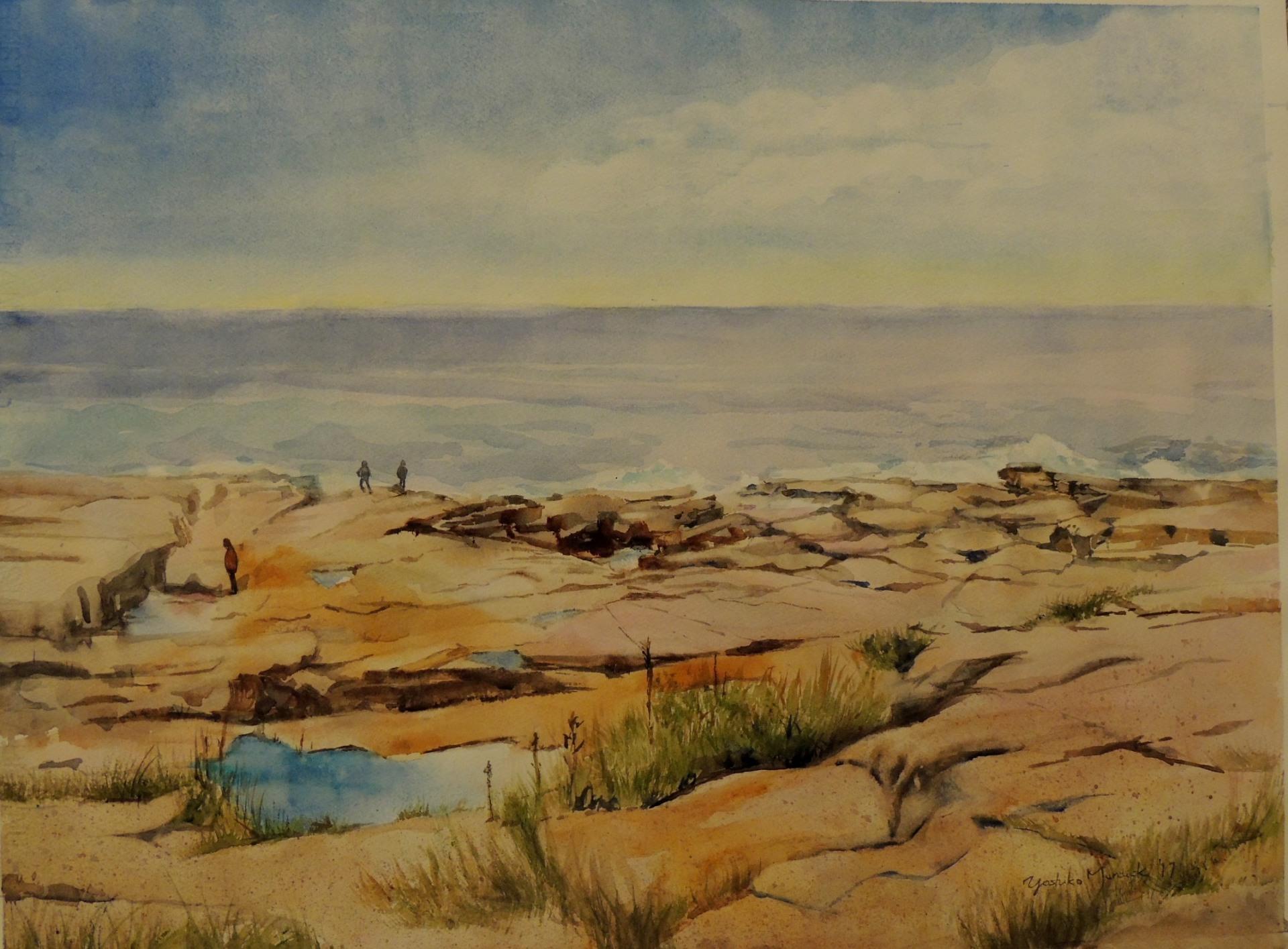 Coastal Maine - Schoodic Point III (2017)