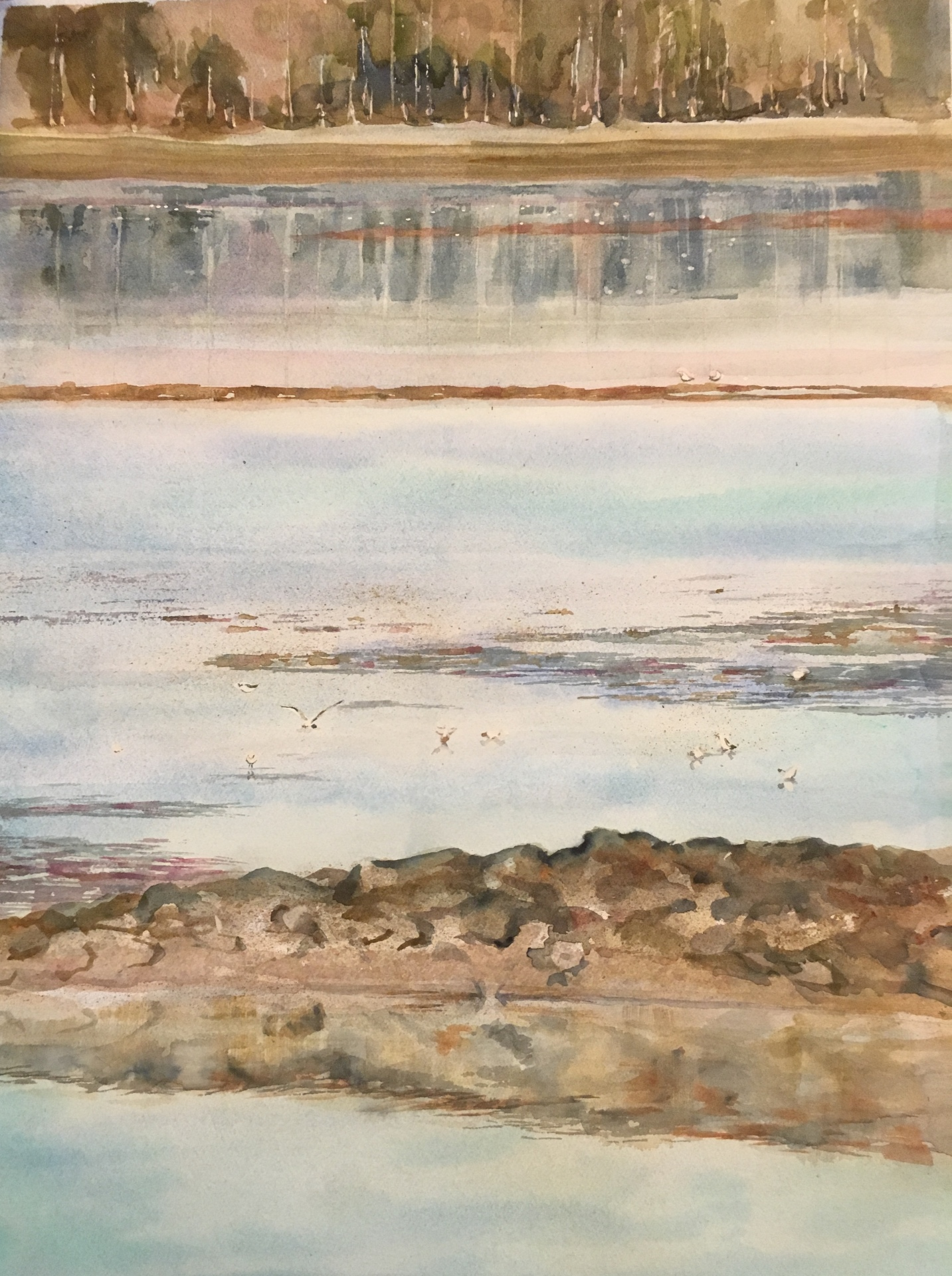 Tidal Inlet (2017)