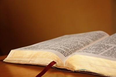 Friday Bible Study