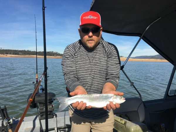 Wild Folsom lake rainbows