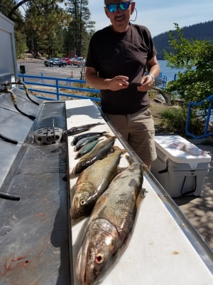 Donner lake fishing report 9-11-17