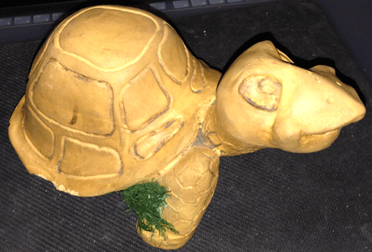 Tortoise, Turtle, Yard Ornament, Air Fern,