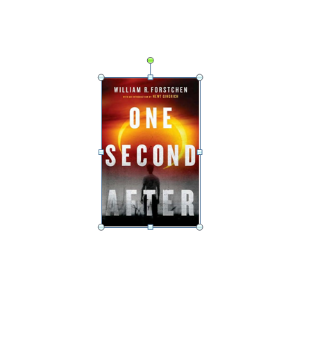 One Second After by W. Forstchen