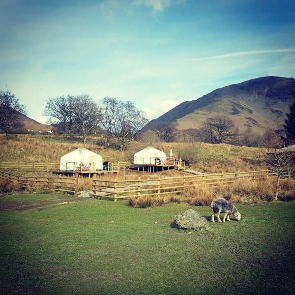 Both our Yurts