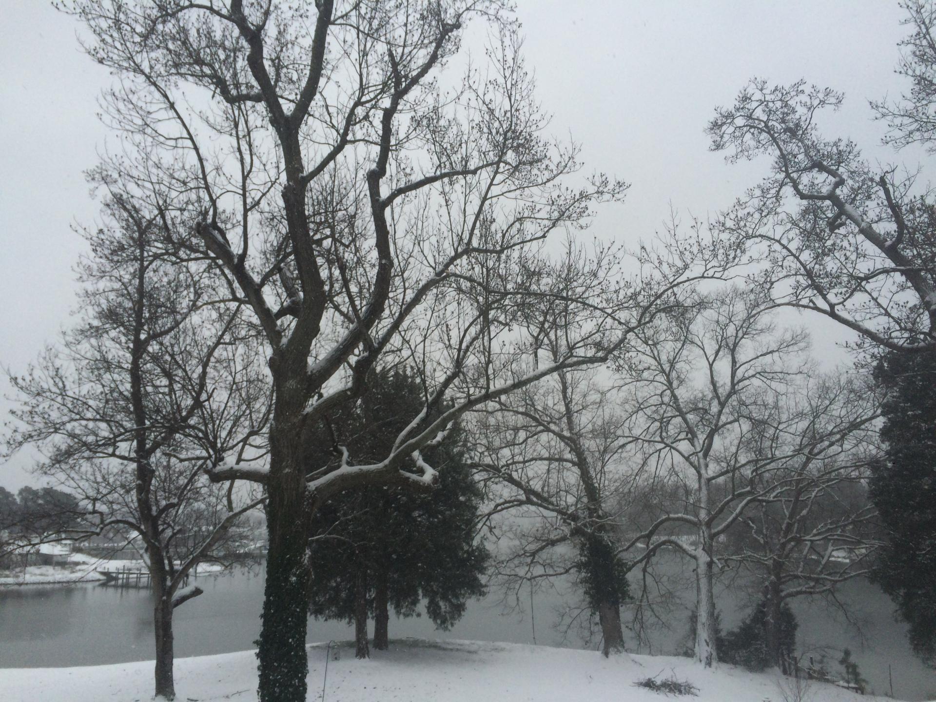 Winter Snow Happenings