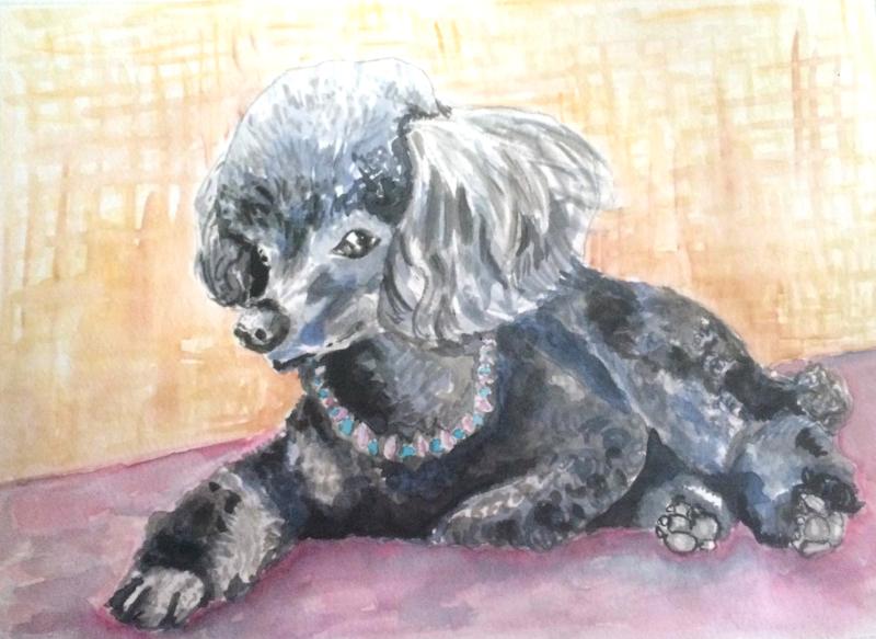 Commissions: Pet Portraits