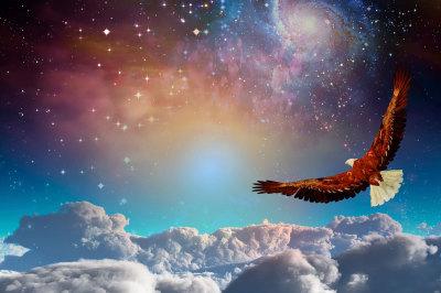 Shamanic Healing  with Reiki 90 min  Power Animal Retrieval, Soul Retrieval, Extraction, Reiki Chakra Clearing, Crystal Shamanic Divination  $125