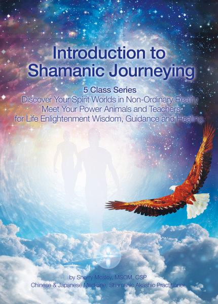 Sherry Mosley, MSOM, Chinese Medicine, Shamanic Practitioner, Akashic Practitioner: healing session