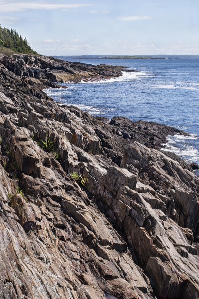 Coastal Bedrock