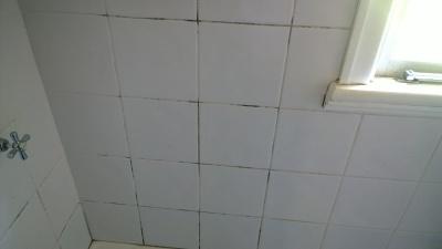 shower tiles before