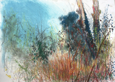 chalk, pastel, charcoal, paper, drawing, london, carshalton