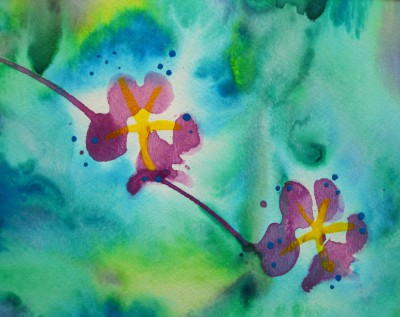 Paw Print Floral 14