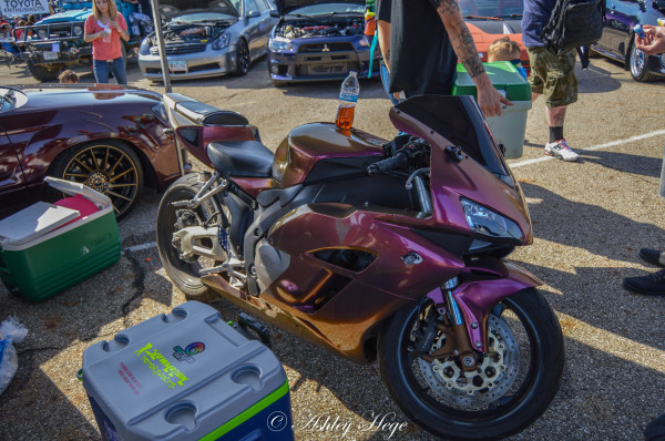Fully wrapped Honda CBR 1000 in Aubergine Bronze