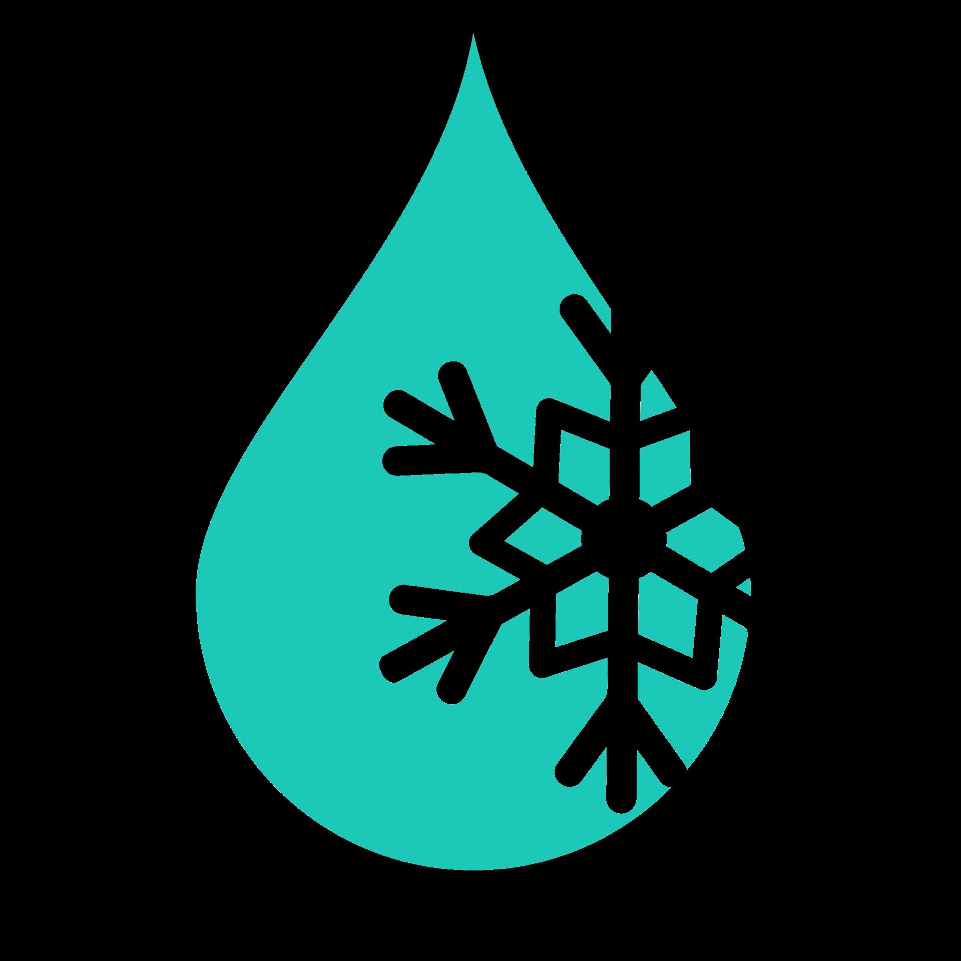 SnowLake Marketing Design