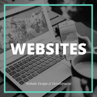 Website Design and Development by SnowLake Marketing Design