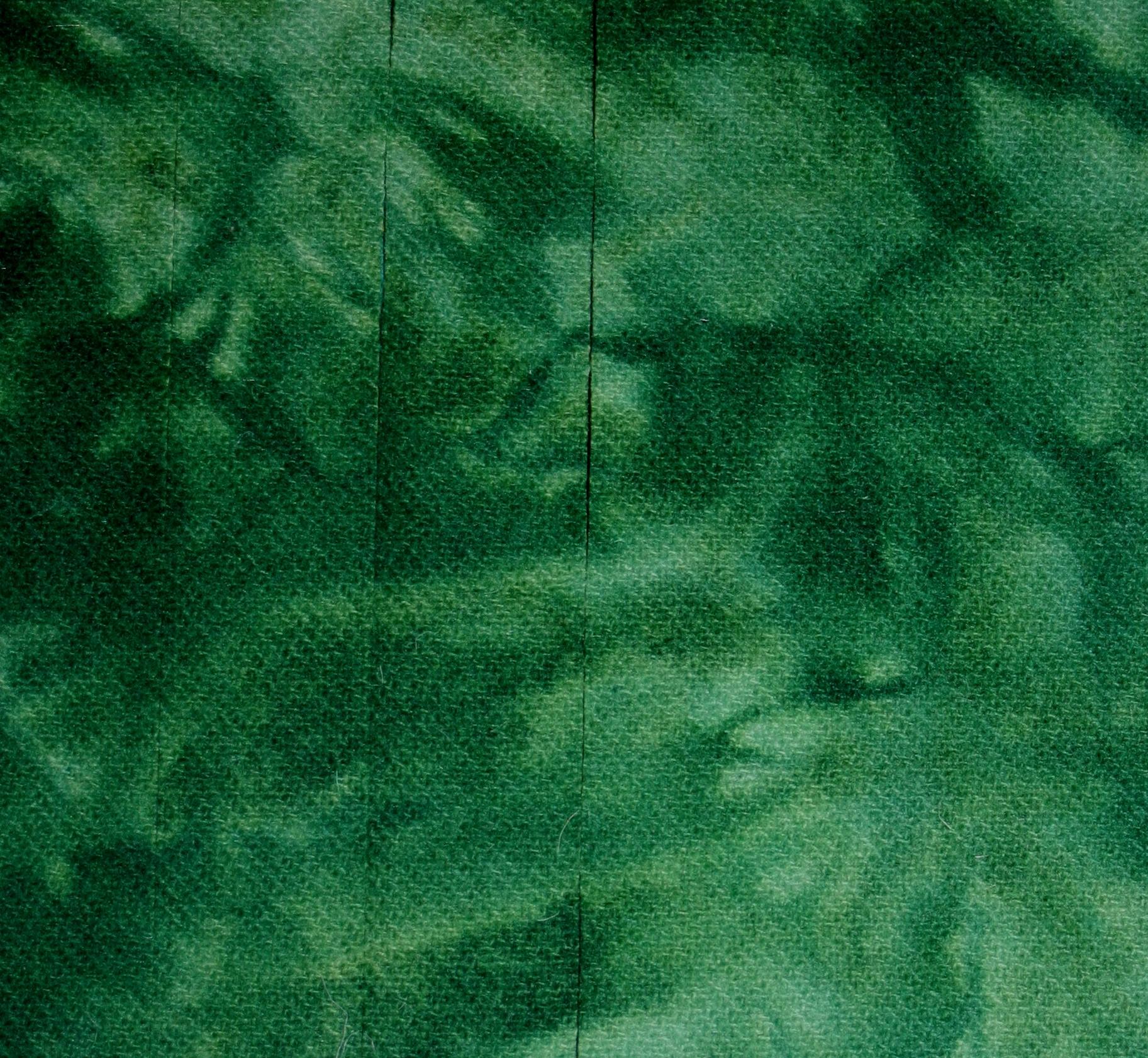 Hand dyed wool Fern Green