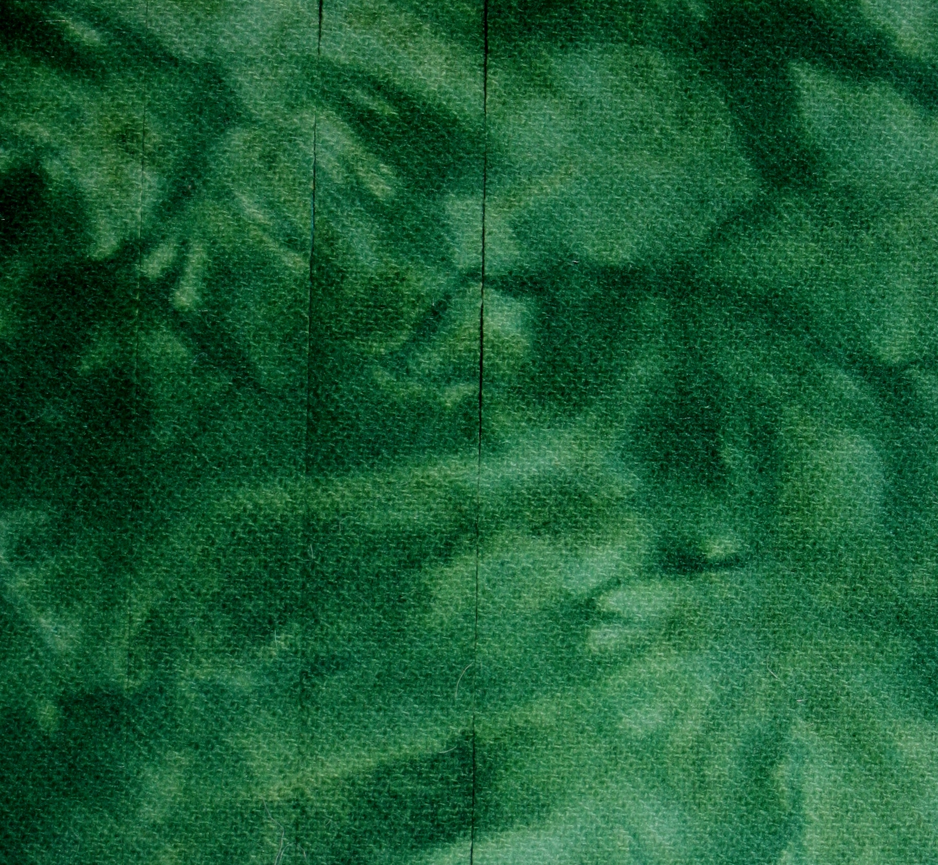 Hand dyed wool Fern Green