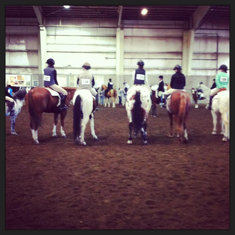 Silver Spurs Horse 4H Club