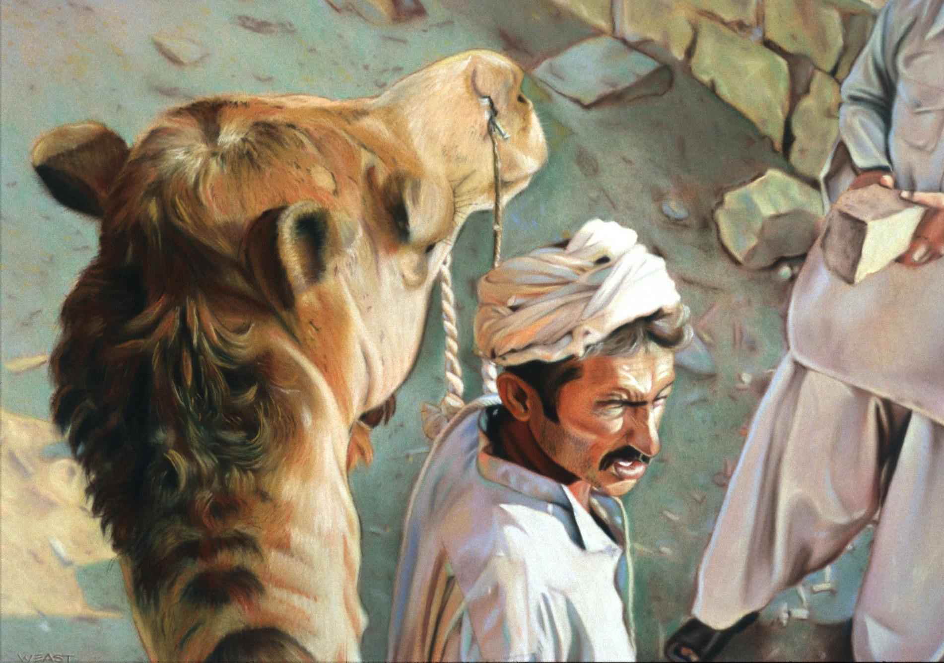 karachi camel driver