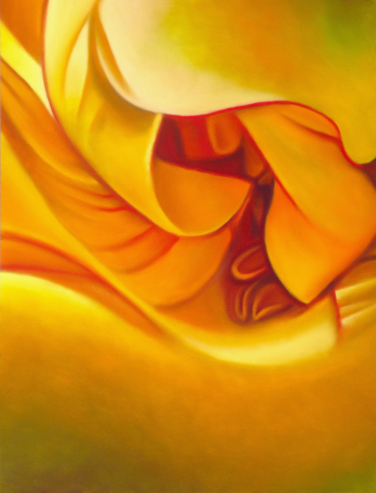yellow rose abstract #1