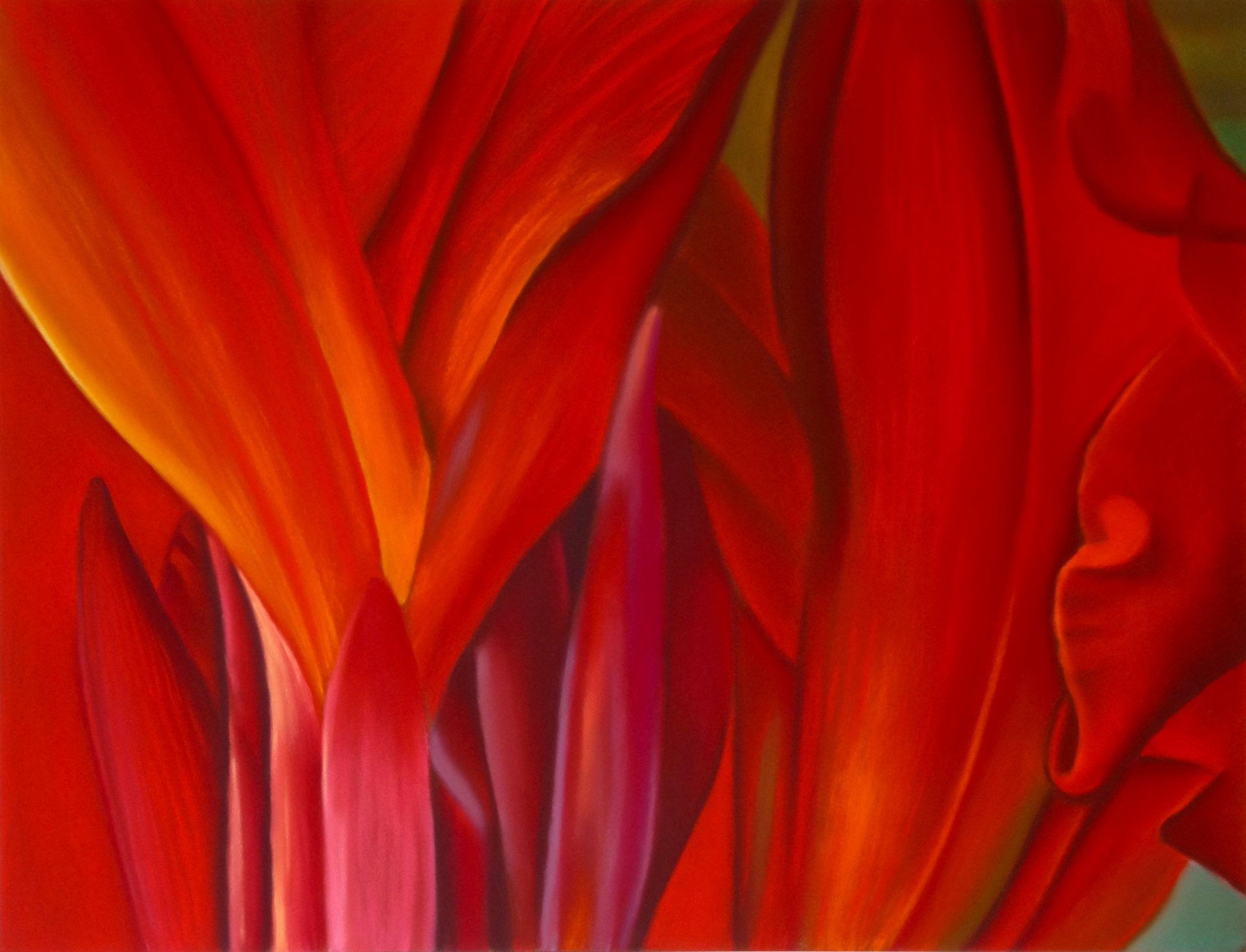 black cana lilly abstract #2