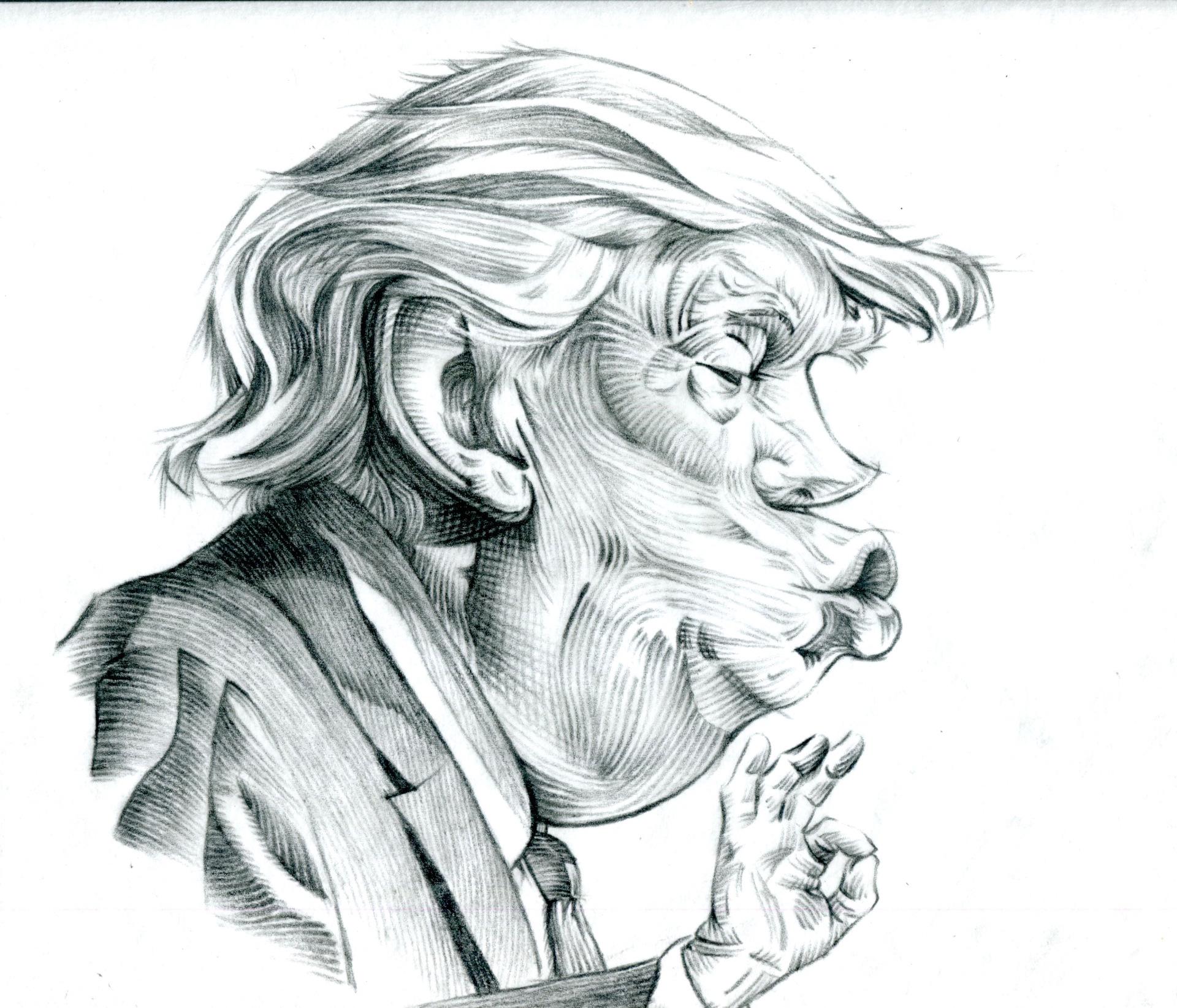 """donald """"fake news"""" trump"""