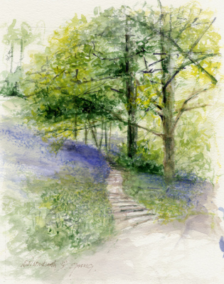 Bluebell slopes & steps, Winkworth