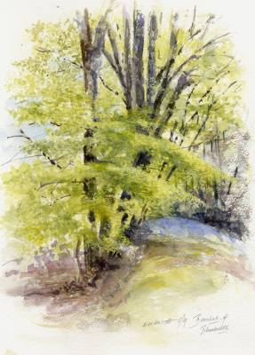 Study, Beech Trees, Winkworth