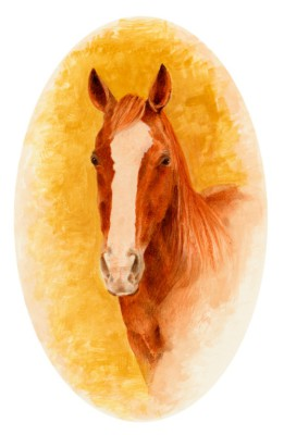 Miniature, watercolour, watercolour paper, equine, horses, portrait.