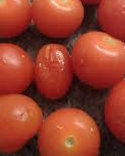 Wrinkled Tomatoes: another visit to the food bank