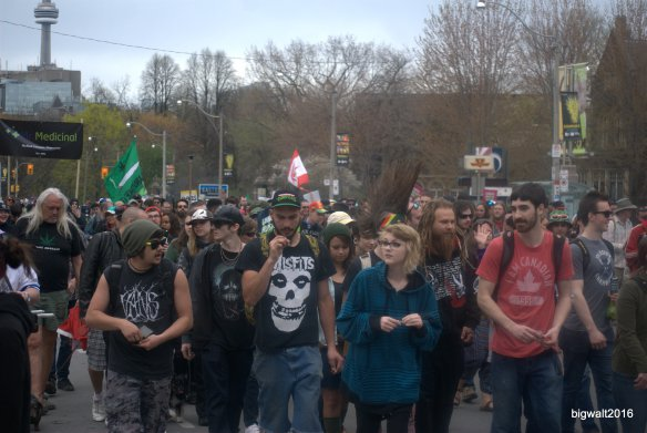 Weed March, Queen's Park Toronto,May 7, 2016