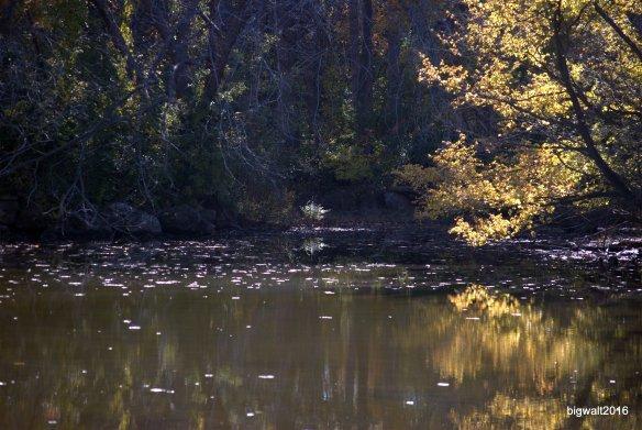 Photo Essay: Ode To Autumn