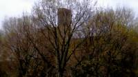 Plans for the Malting Silos Still Leave Many Questions