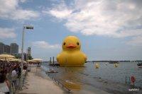 A Big Birthday Bash And A Big Bath Toy, Toronto Harbour , Canada Day 2017