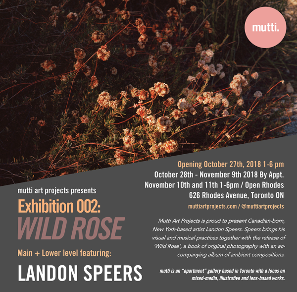 Mutti Art Projects presents Exhibition: 002 WILD ROSE / October 27th, 2018