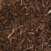 Pine Cedar Forest Hemlock Mulch