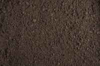Soil Dirt Compost