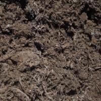 Mushroom Compost Garden Nutrition