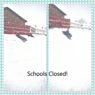 Snow and Livestock!!