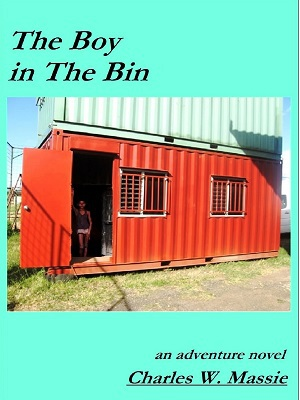 The Boy in The Bin cover
