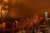 Oregon forest fire mile post 36 pit wildland fire Estacada